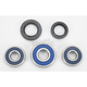 Wheel Bearing and Seal Kit - 25-1355