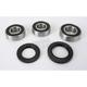 Rear Wheel Bearing and Seal Kit - PWRWS-K05-000