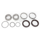 Rear Wheel Bearing Kit - PWRWK-C04-000