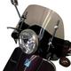 6 Inch Smoked Vespa LX, GT, GTS Windshield - 0700-1010