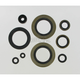Oil Seal Set - M822104