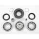 Rear ATV Differential Bearing - A25-2013