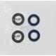 Front Wheel Bearing Kit - A25-1070