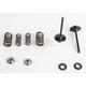 Black Diamond Stainless Steel Intake Only Valve & Spring Conversion Kit (.440