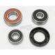 Rear Wheel Bearing Kit - PWRWK-K15-001