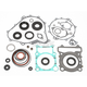 Complete Gasket Set with Oil Seals - 0934-0699