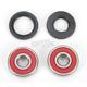 Wheel Bearing and Seal Kit - 25-1310