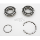 Crankcase Main Bearings - A-9028