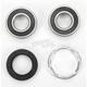 Rear Wheel Bearing Kit - PWRWK-H01-521