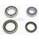 Rear Wheel Bearing Kit - A25-1018