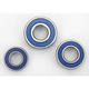 Rear Wheel Bearing Kit - A25-1056