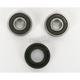 Front Wheel Bearing Kit - PWFW-KS37-000