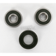 Rear Wheel Bearing Kit - PWRWK-S39-000