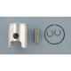 Pro-Lite Piston Assembly - 67mm Bore - 558M06700