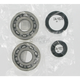 Crank Bearing/Seal Kit - A24-1027
