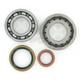 Main Bearing and Seal Kit - K066