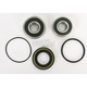 Rear Wheel Bearing and Seal Kit - PWRWS-H44-000