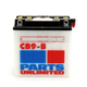 Heavy Duty 12-Volt Battery - RCB9B