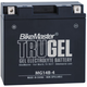 TruGel 12-Volt Battery - MG14B-4
