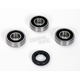 Wheel Bearing and Seal Kit - A251370