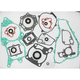 Complete Gasket Set with Oil Seals - M811252
