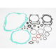 Complete Gasket Set with Oil Seals - 0934-0115