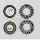 Crank Bearing/Seal Kit - A24-1026