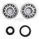 Crank Bearing and Seal Kit - 23.CBS32099