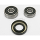 Rear Wheel Bearing Kit - PWRWK-K14-001