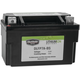 Lithium Ion Battery - DLFP-7A-BS