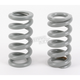 Big Gray Shock Springs - LA-8590-02