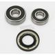 Rear Wheel Bearing Kit - PWRWK-H26-021