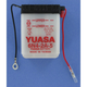 Conventional 6-Volt Battery - 6N4-2A-5