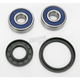 Wheel Bearing and Seal Kit - 25-1316