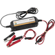 Lithium Ion Battery Charger - TS0207A
