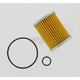 Oil Filter - CH6066