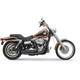 FireSweep Series Exhaust System - 13123D