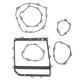 Lower End Gasket Kit - C8715