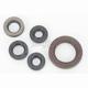Oil Seal Kit - 0935-0386