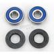 Wheel Bearing and Seal Kit - 25-1387