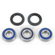 Wheel Bearing and Seal Kit - 25-1155