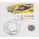 530ZRP OEM Chain and Sprocket Kits - 6ZRP102KHO02