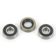 Rear Wheel Bearing Kit - PWRWK-H27-001