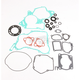 Complete Gasket Set with Oil Seals - M811235
