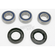Rear Wheel Bearing Kit - A25-1021