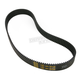 8mm Primary Belt for Big Twin w/Tin Primary - BDL-37144-1