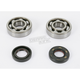 Main Bearing and Seal Kit - K045