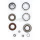 Rear Differential Bearing Kit - 1205-0233