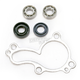 Water Pump Repair Kit - WPK0038