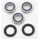 Rear Wheel Bearing Kit - A25-1255